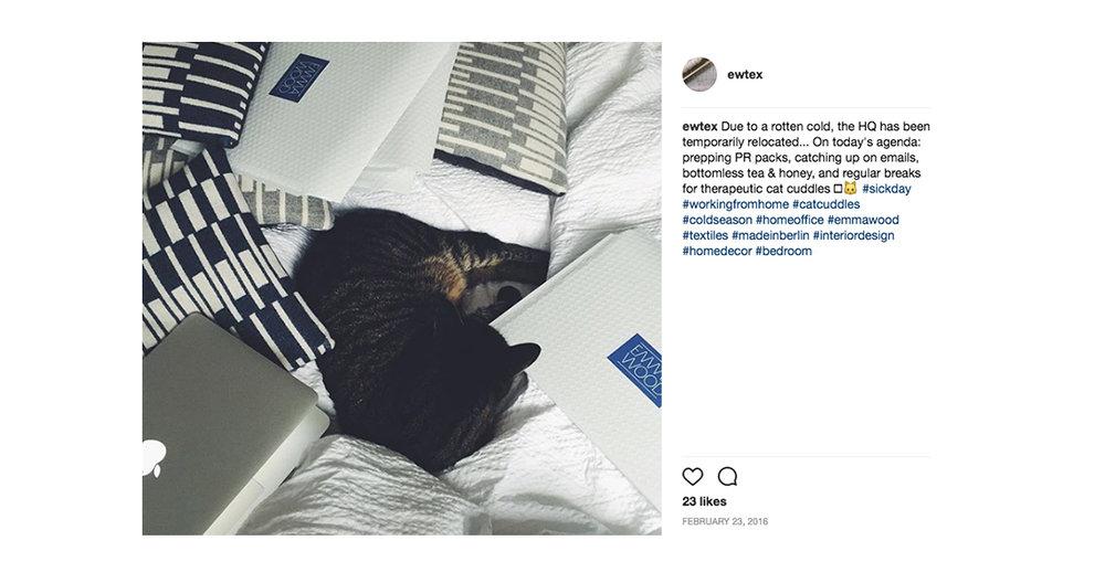Instagram - Cold (Emma Wood).jpg