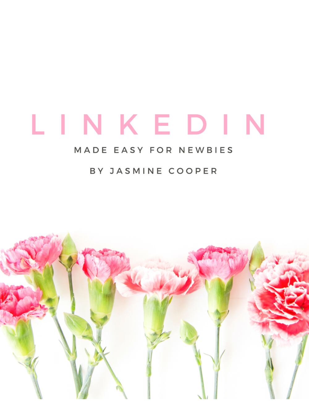 LinkedIn made easy for newbies