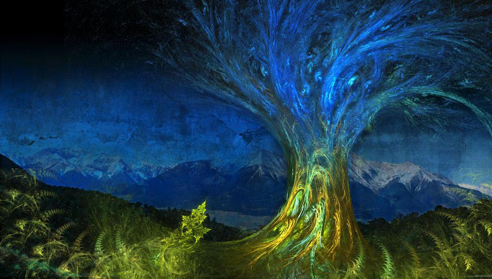 Tree Frax Rebuild 2014 Light crop.jpg
