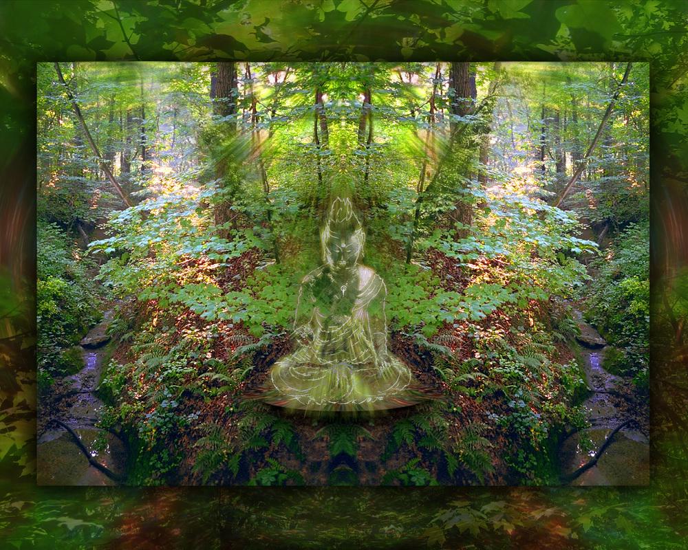 buddha light wood 2010 v2.jpg