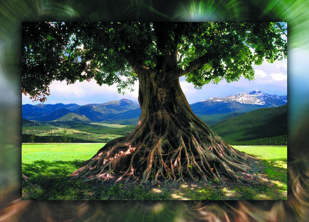 buddha Mt smaller 2.jpg