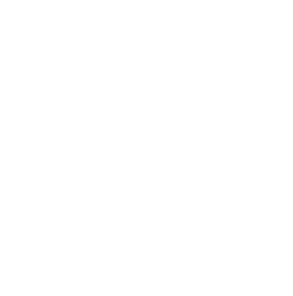 Skinny Devil Music Labs logo white on transparent-01.png