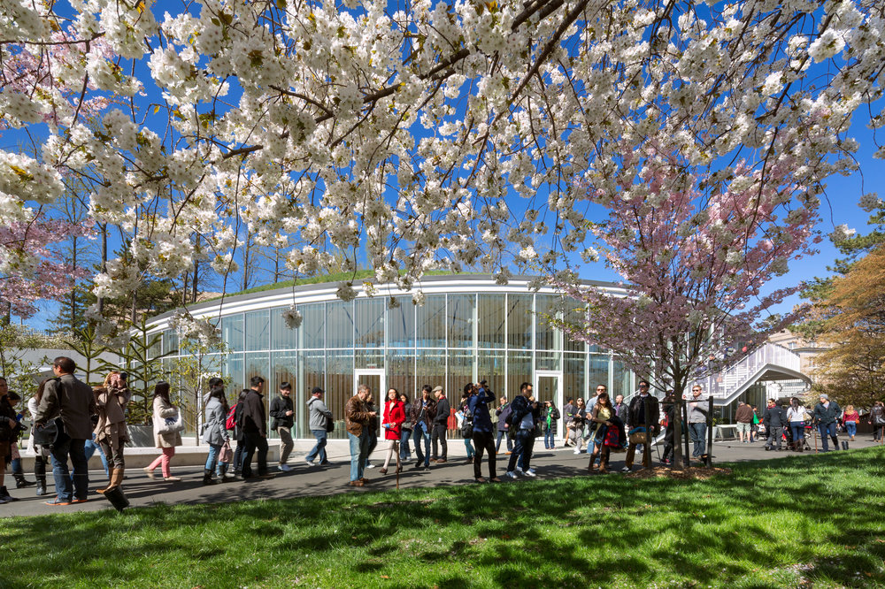 Brooklyn Botanic Gardens Visitor Center, Weiss/Manfredi Architects