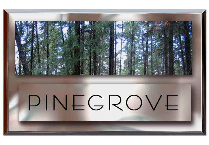 PINEGROVE LOGO copy.jpg