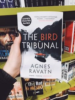 bird tribunal.JPG
