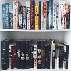 nesbo bookshelf.jpg