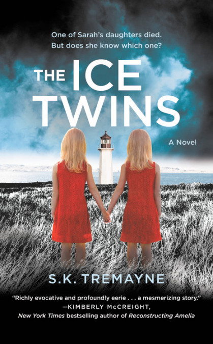 The Ice Twins SK Tremayne.jpg