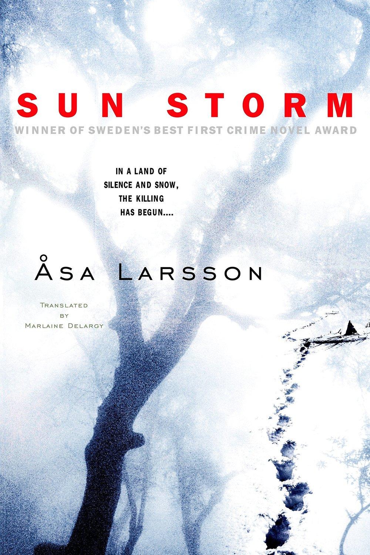 Sun Storm.jpg