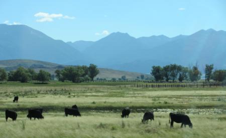 Photo: A beautiful vista in Eastern Oregon.