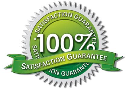 grantizado 100 (PNG).jpg