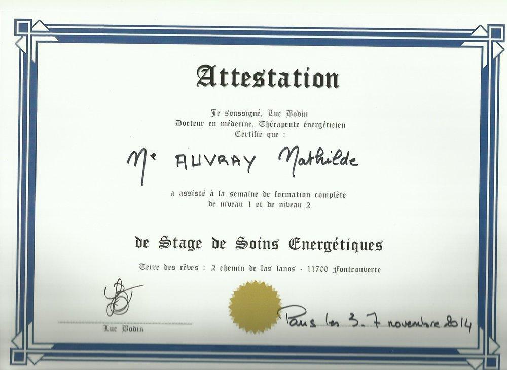 Certificat de formation en Thérapie Energétique par Luc Bodin - Une formation qui permet d'acquérir les bases du soin énergétiques.