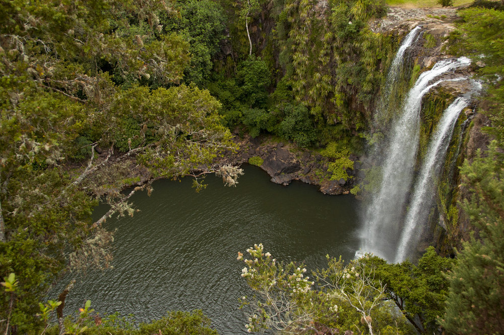 New Zealand North Island Whangarei Falls-Daniel Noll 2013-IMG1013 Lg RGB.jpg