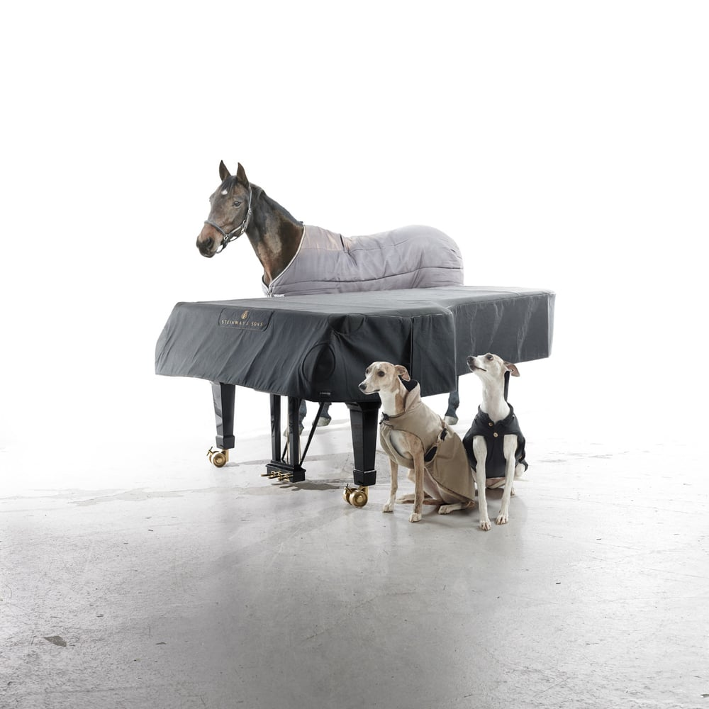 Steinway and Sons 2012