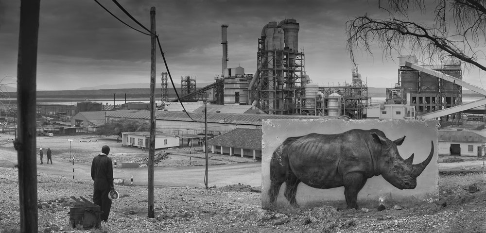Nick Brandt  Inherit the Dust - Factory with rhino