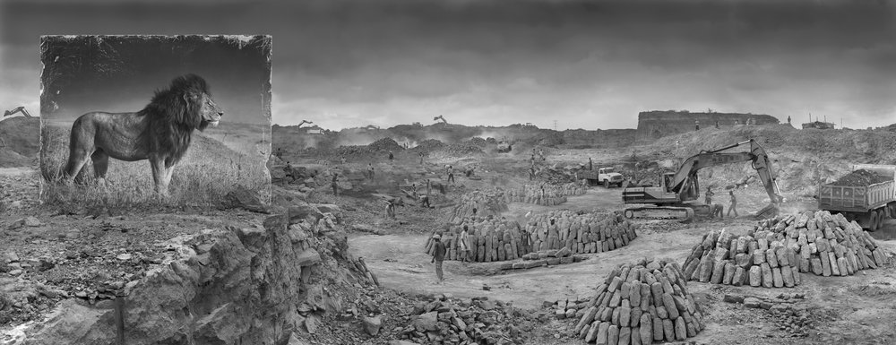 Nick Brandt  Inherit the Dust - Quarry with lion