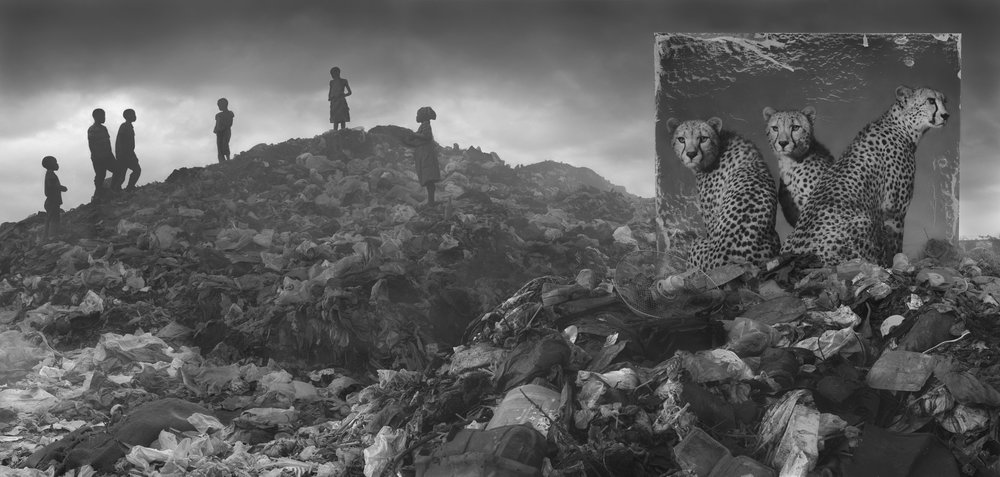 Wasteland with cheetah and children