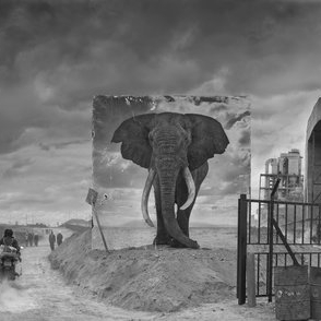 NICK BRANDT  Inherit the Dust  15.09 - 13.11.2016