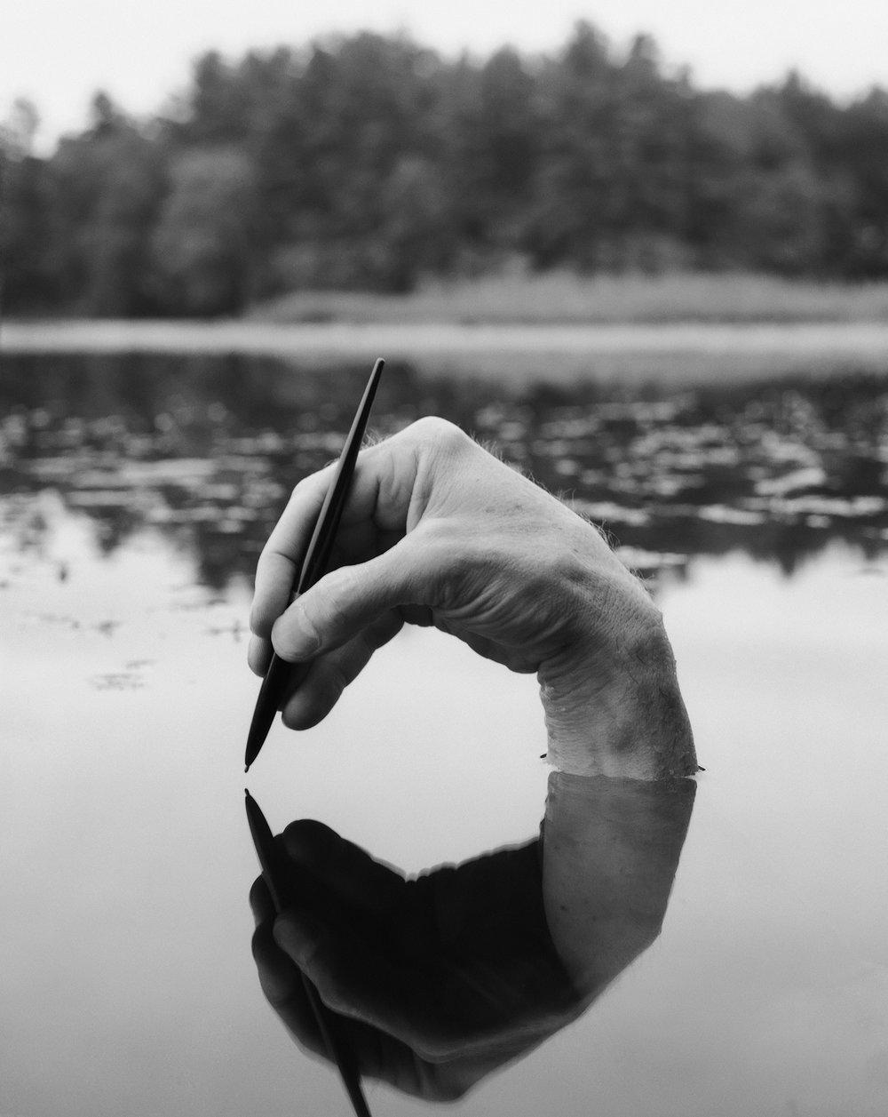 Arno Rafael Minkkinen - Fosters Pond [pen]