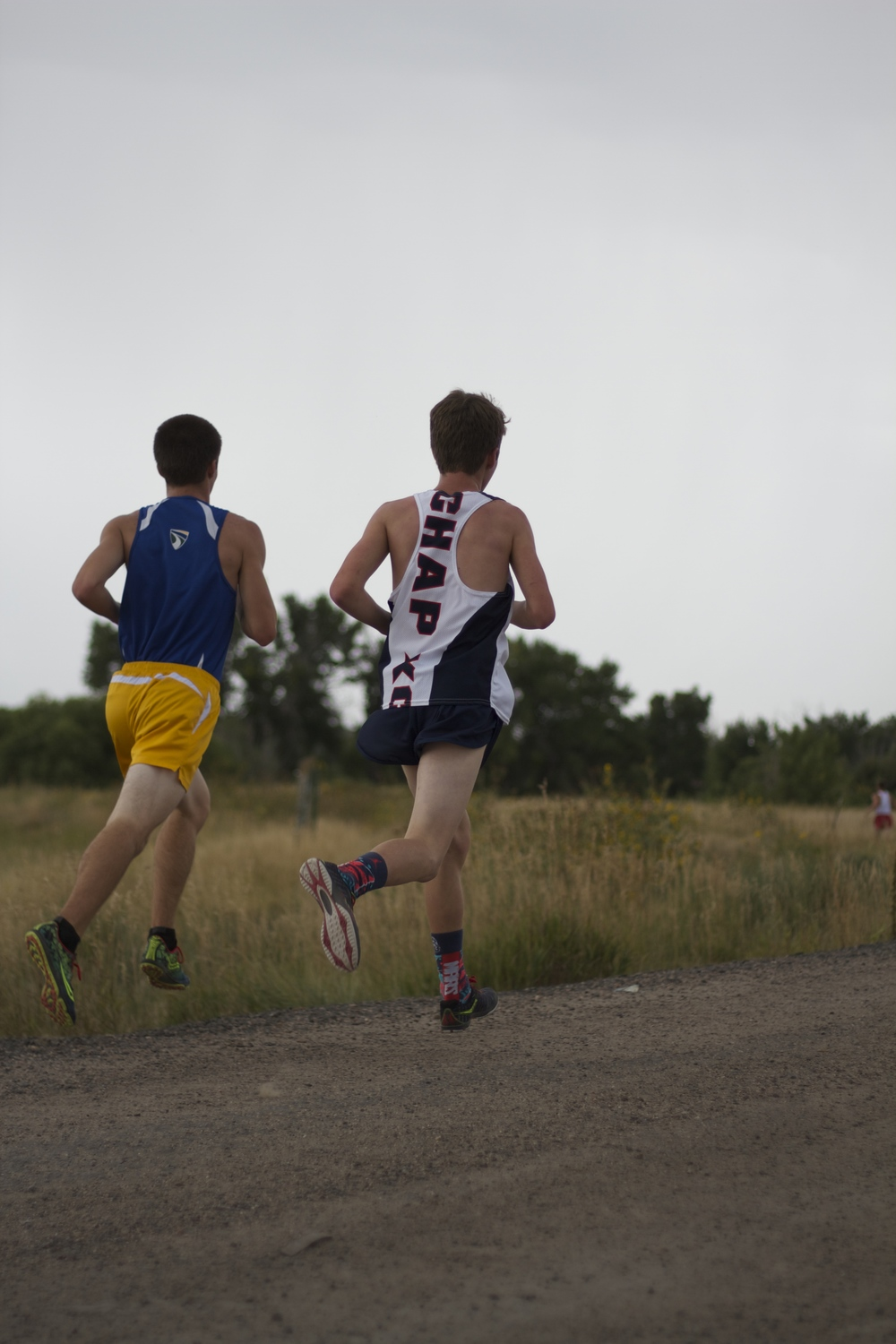 Chaparral Boys Cross Country races in hopes of placing well at the state competition. Photo by Sydney Mullen