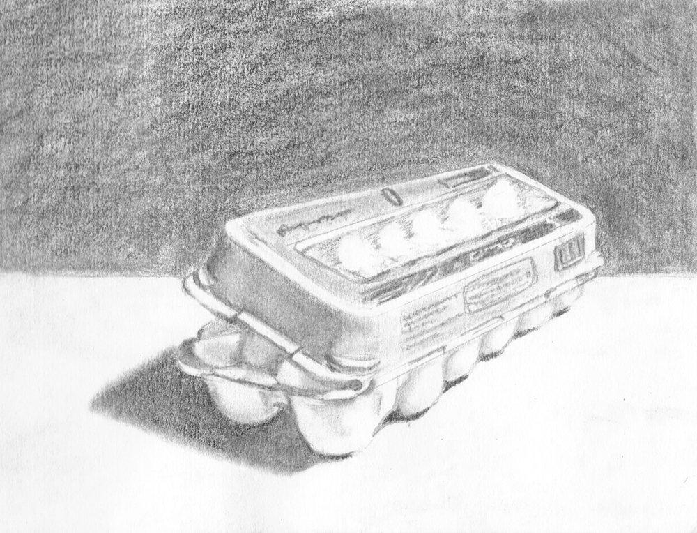 Egg Carton b