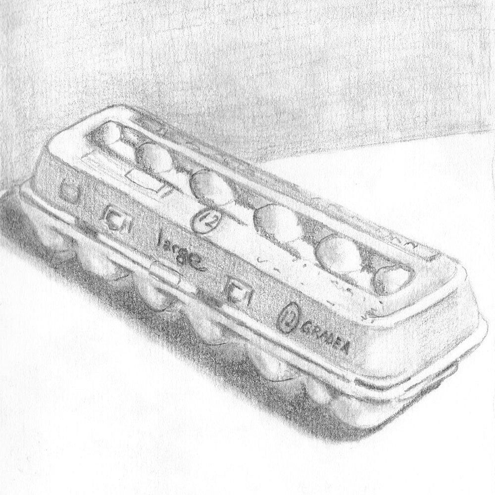 Egg Carton a