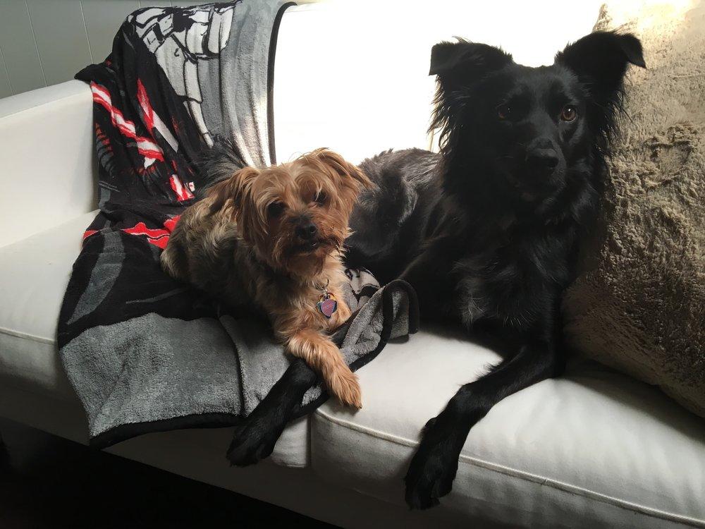 Heidi and Coco Mudd