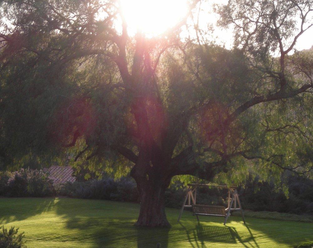 Rancho La Puerta - Photo by Tom Pierson