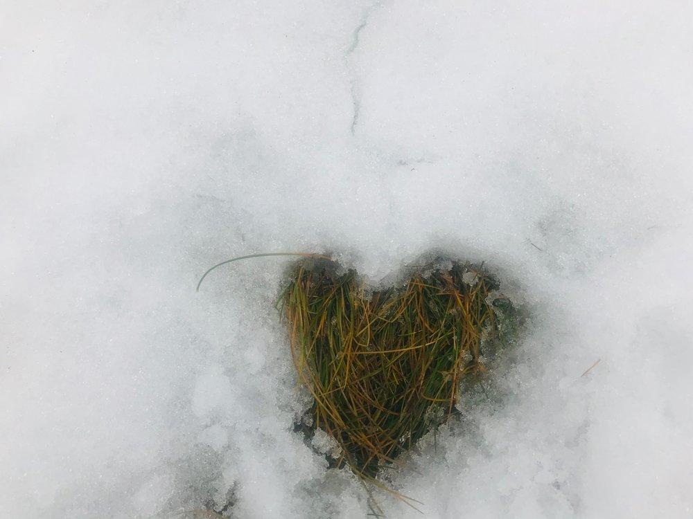 Melting heartjpeg