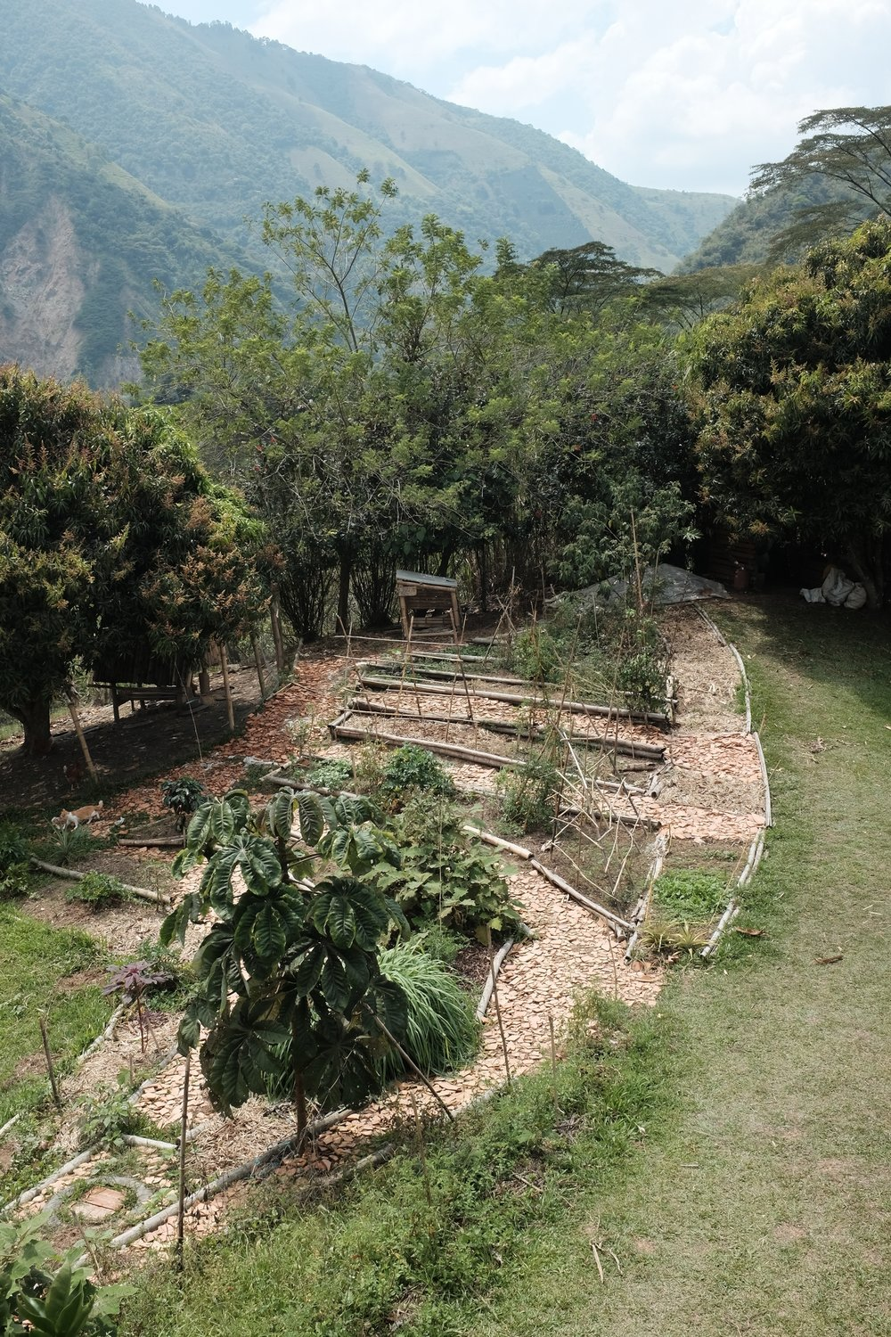Permaculture site