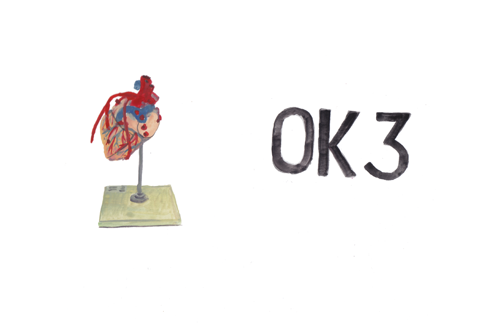 Left, a heart model in the lab near the surgery.  Right, a sign that was in the hallway outside, marking the room we are in.