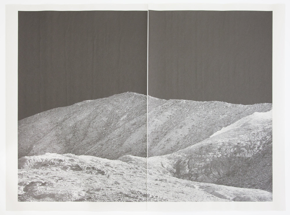 Alia Malley, DV_7424,Unique diptych pigment print on newsprint, 36 x 24 inches, 2015