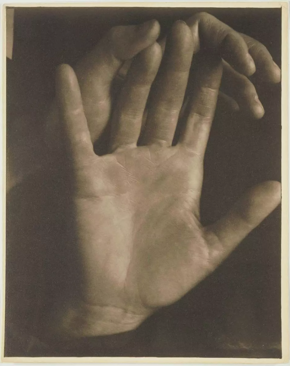 Rebecca's Hands , Paul Strand, 1923