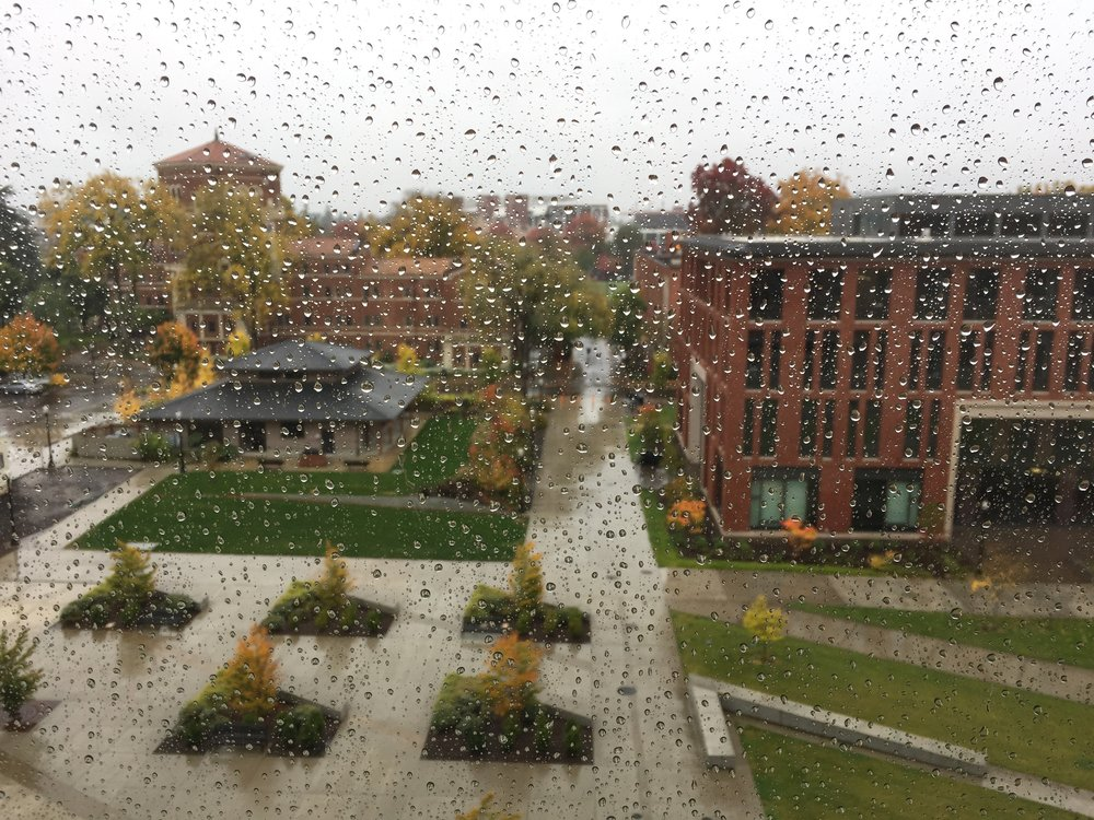 The view from Oregon State University, in Corvallis, Oregon. Photo by Alyson Belcher.