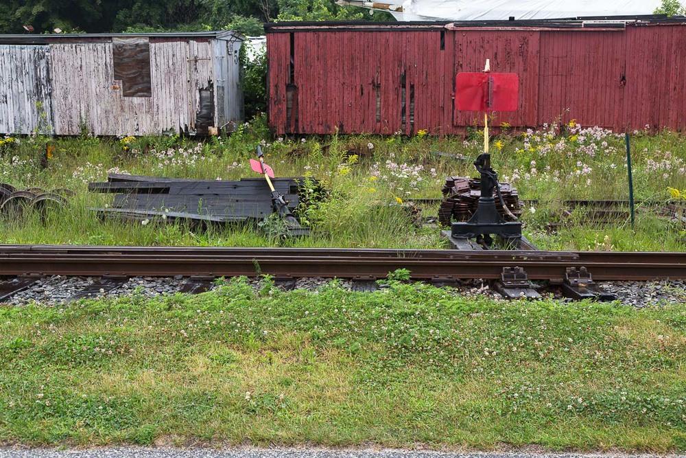 train__C2A1991.jpg