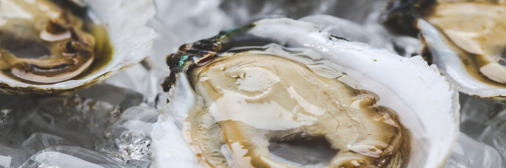 Image: Virginia Tourism Bureau, Chris Cunnigham Photography / Andersons Neck Oyster Co