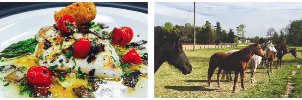 Photo Credits:  Bistro 1888  / Shangrila Guest Ranch