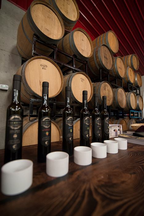 Photo Credits: Slow Food Vast Wine - Craig Spiering