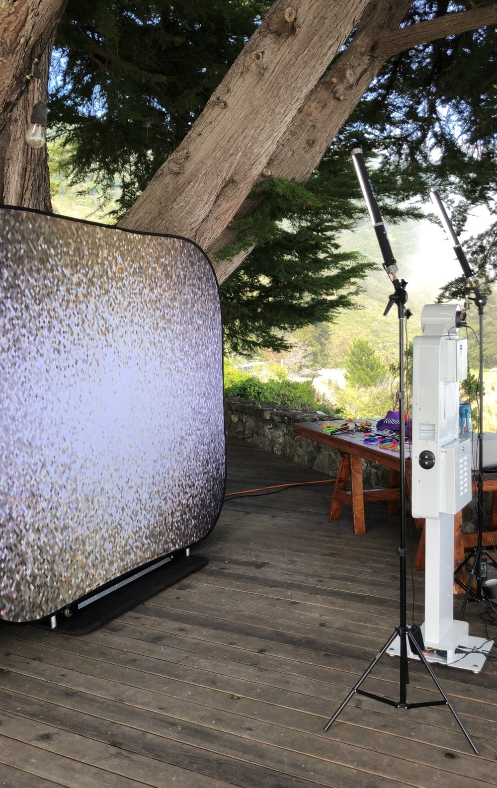 Los Gatos DJ - Gold/Silver Shimmer Photo Booth Backdrop