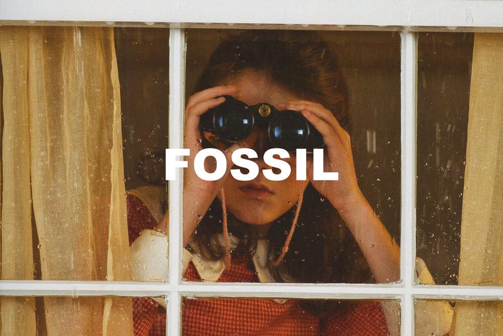 Fossil_Option1.jpg