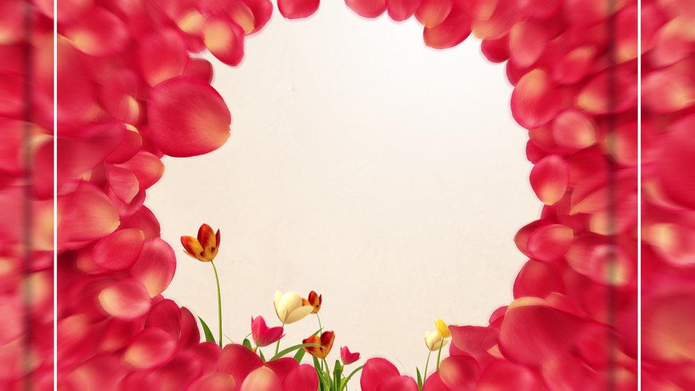 BBW_Spring3_P02.jpg