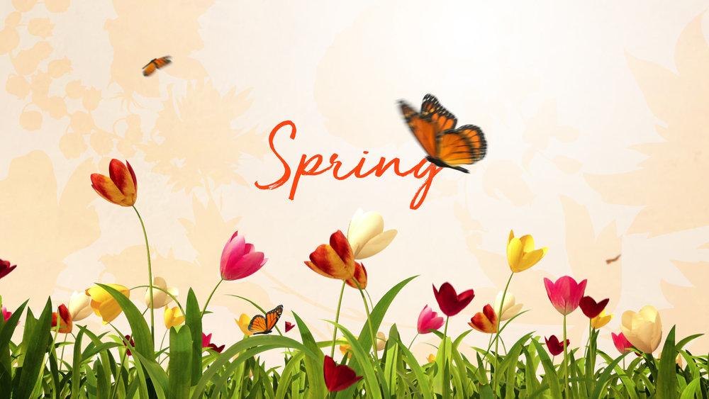 BBW_Spring3_P03.jpg