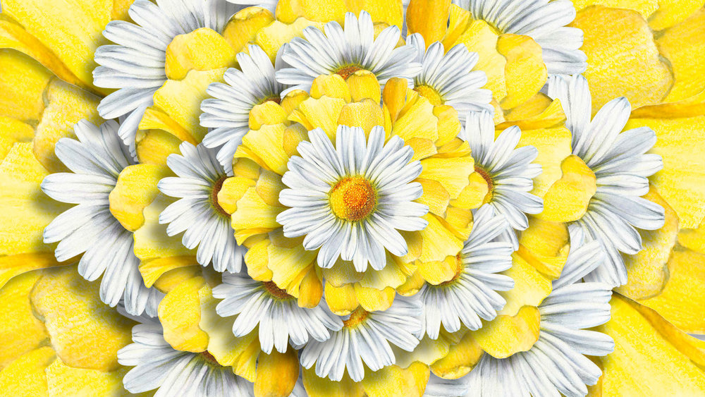 BBW_Spring3_P10.jpg