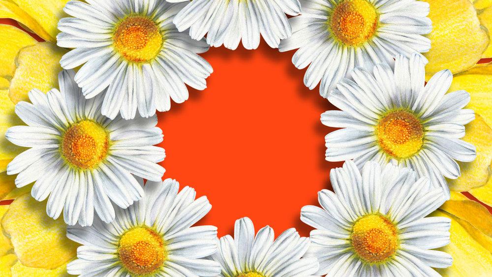 BBW_Spring3_P11.jpg