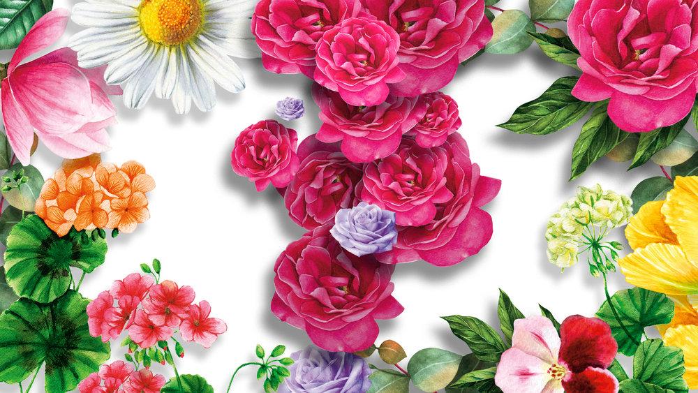 BBW_Spring3_P23.jpg