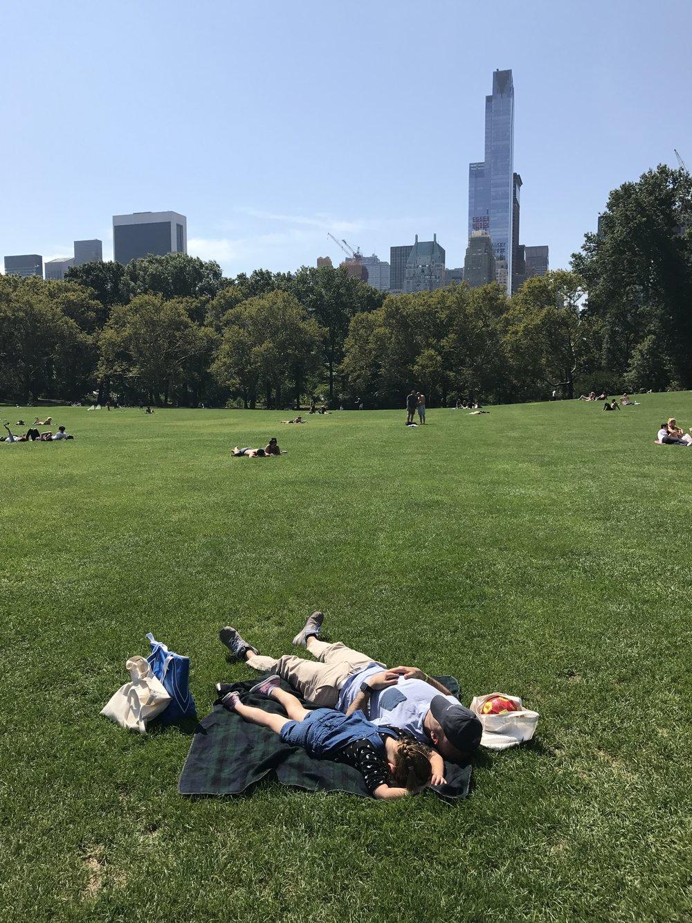 Central Park Nap