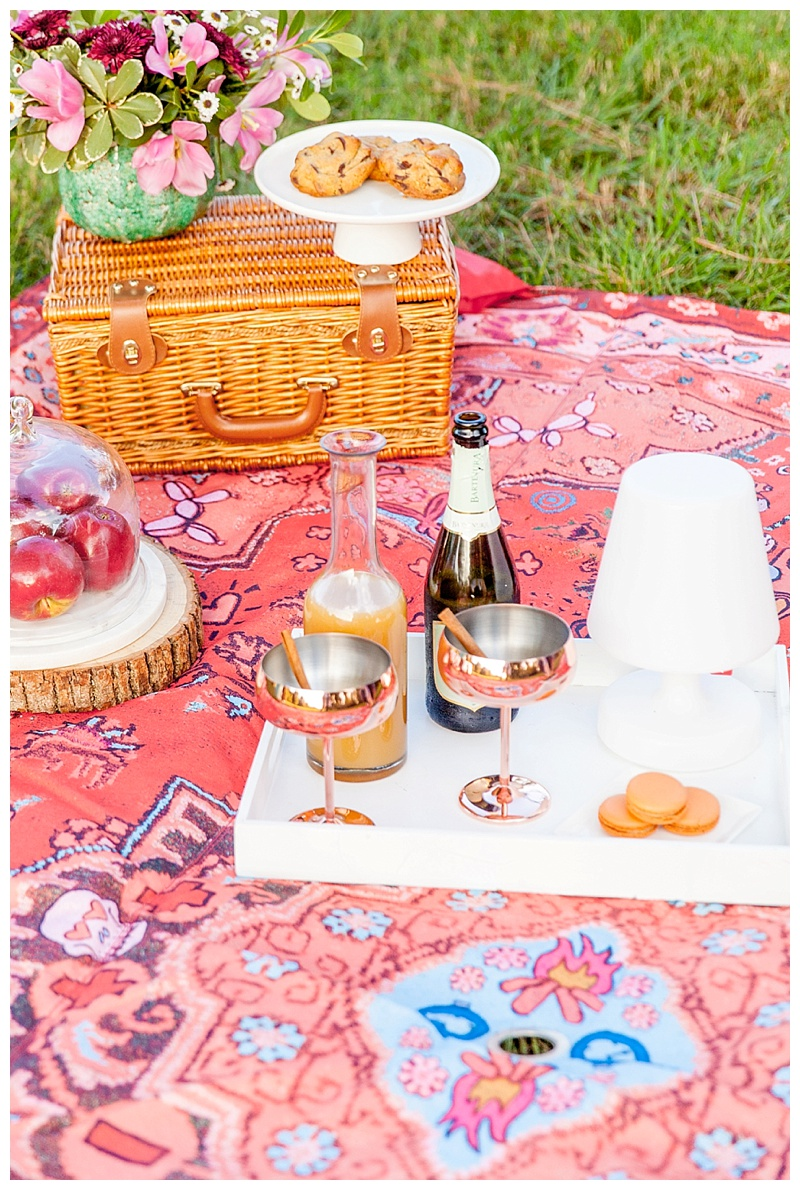 cake and confetti meredith staggers fall picnic ideas