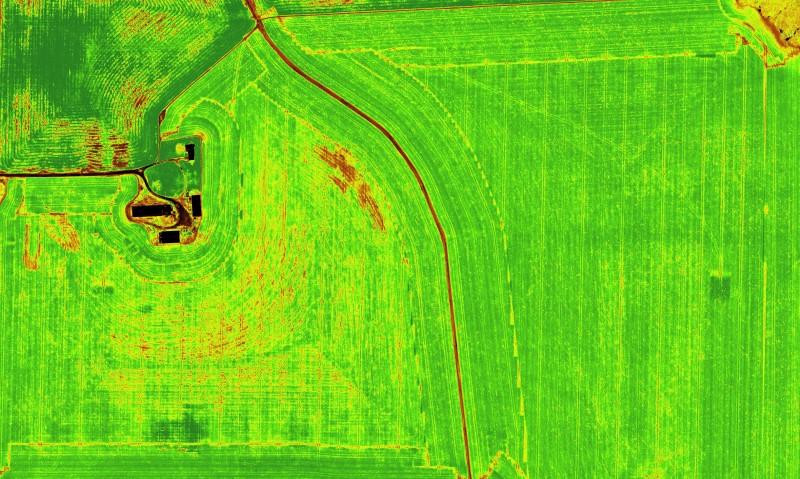 field-ndvi-md-01.jpg