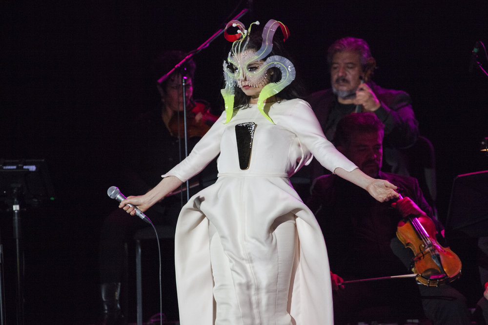 Björk, cited as one of Iceland's most famous musicians, performing in Mexico City in 2017. Credit: A. Maldon (Wikimedia Commons).
