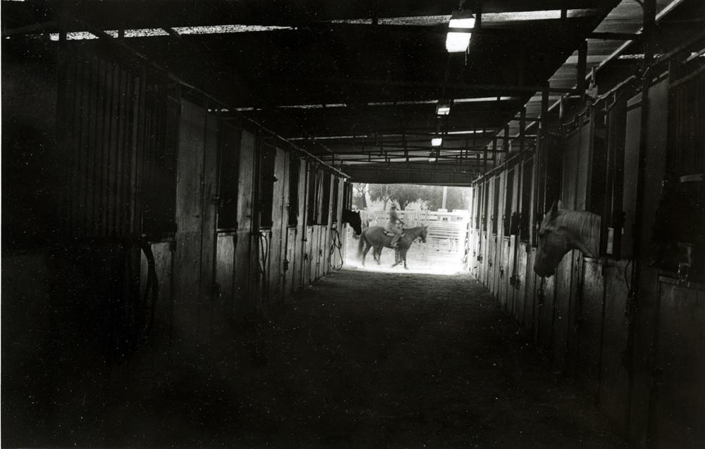 Barn, Salinas