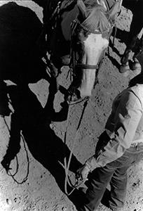Cowboyholding horseSQuare.jpg
